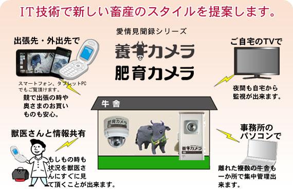 養牛カメラ導入効果